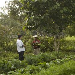 Organic Garden Ka'ana Resort