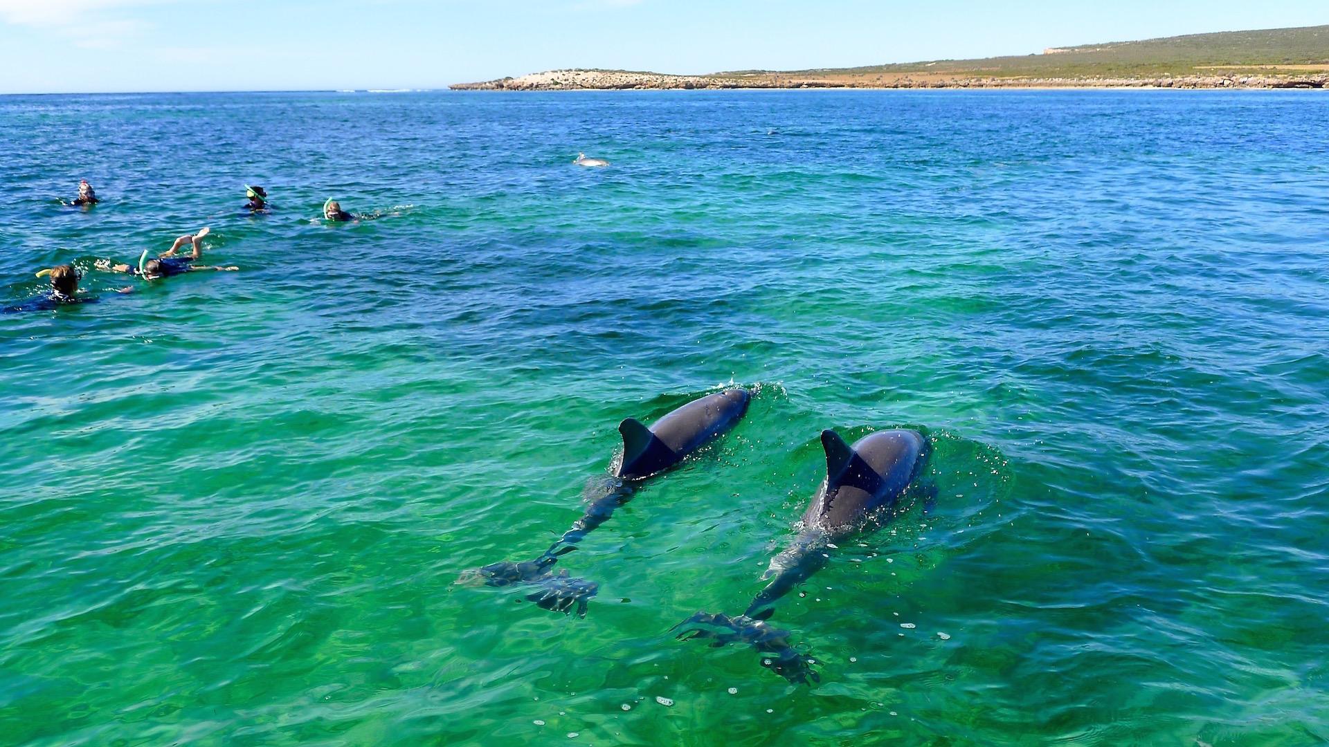 Eyre Peninsula, SA