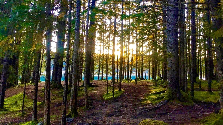 Mount Juneau Trail, Alaska